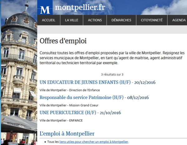 17 Montpellier Offre emploi